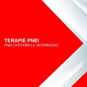 Corso online Terapie Pnei Intermedio